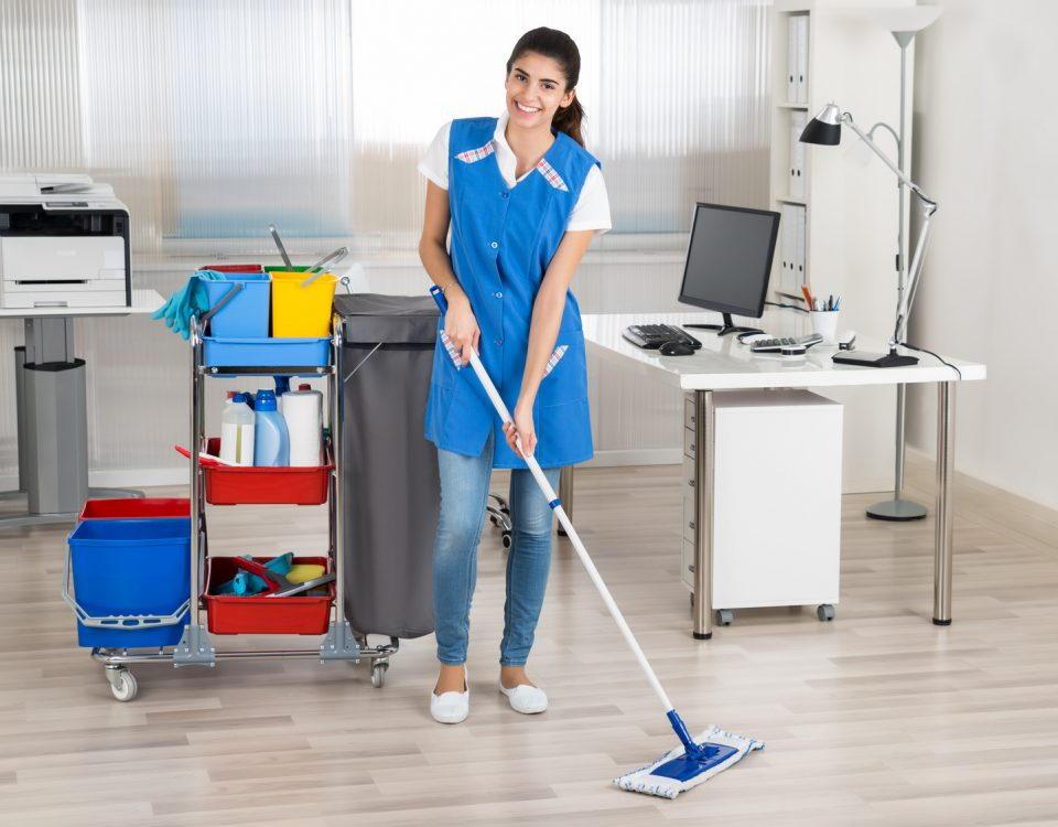 Sprzątanie Toruń - Sprzątanie mieszkań - Sprzątanie domów - Sprzątanie biur - Sprzątanie Toruń cennik - FiSprzątanie Toruń - Sprzątanie mieszkań - Sprzątanie domów - Sprzątanie biur - Sprzątanie Toruń cennik - Firma sprzątająca Toruńrma sprzątająca Toruń